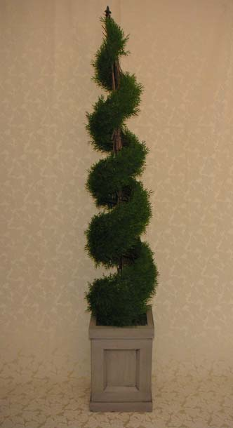 Wedding Rental Spiral Cedar Topiary Spiral Cedar Topiary